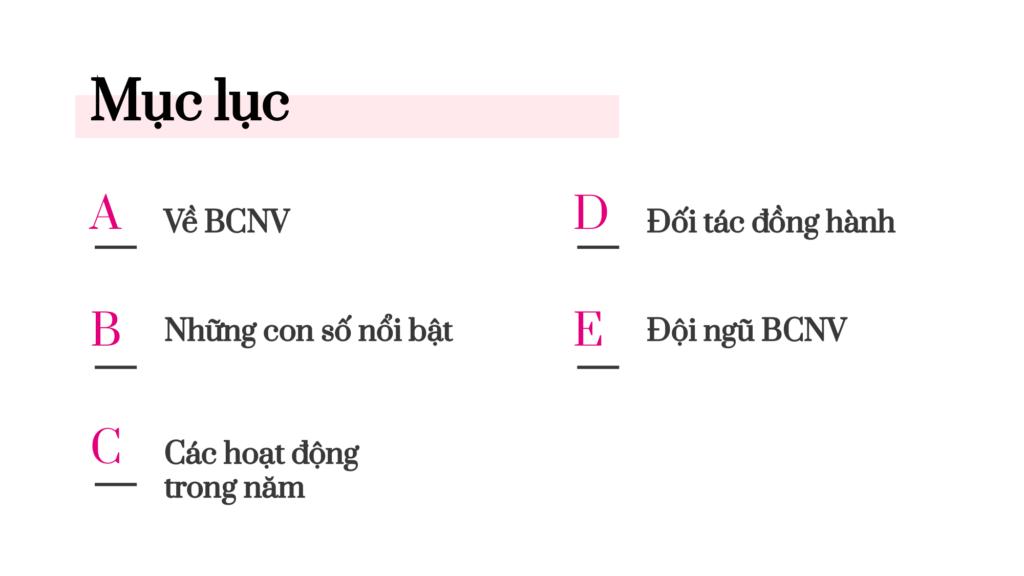 Báo cáo thường niên BCNV 03