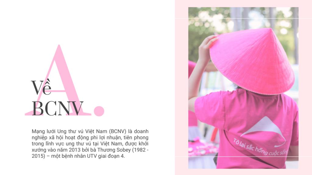Báo cáo thường niên BCNV 02